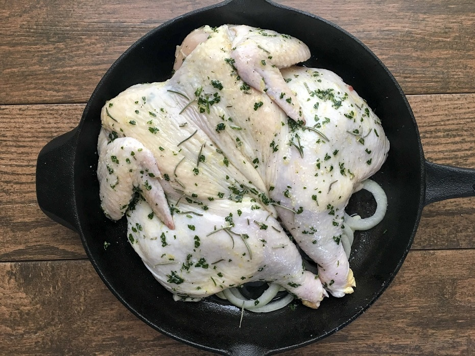 oven-roasted-butterflied-chicken-5