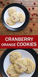 Canberry-Orange-Cookies-10