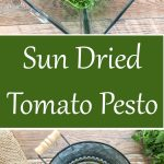 Sun-dried-tomato-recipe-10