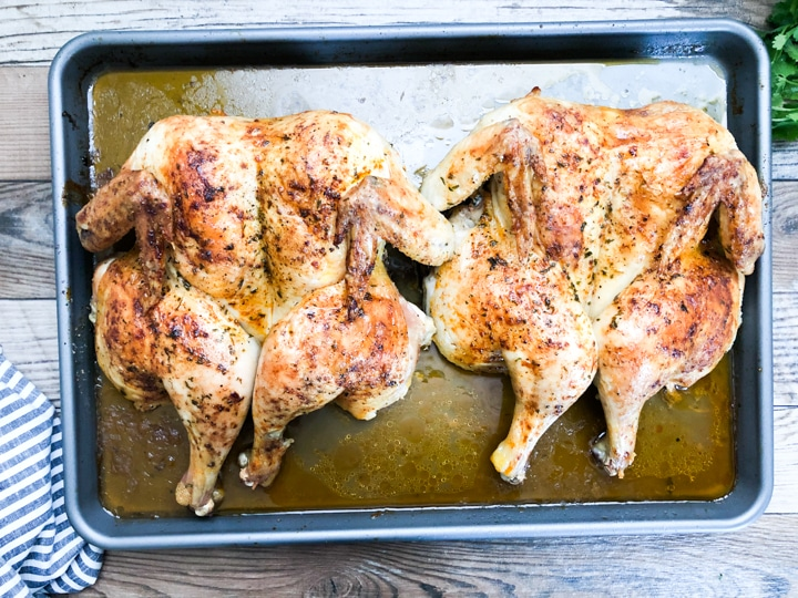crispy roast chicken in baking sheet with pan juices